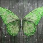 "Ludo ""e-Lepidoptera"" New Print Available Now"