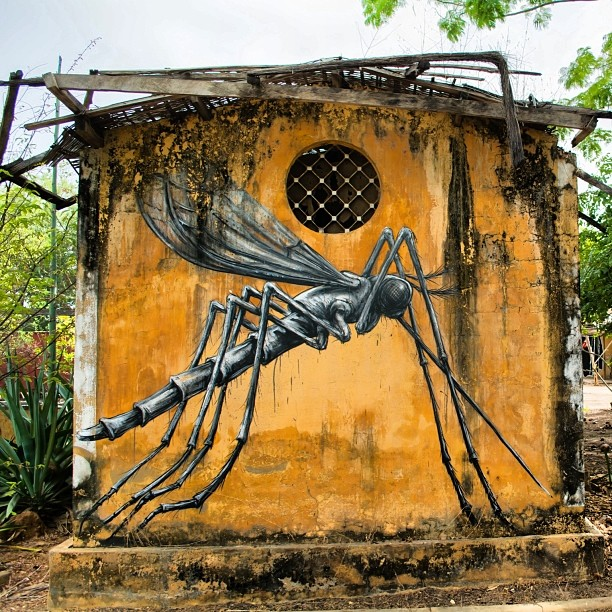 ROA New Pieces For Wide Open Walls – Gambia