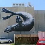 ROA New Mural – Nelson, New Zealand