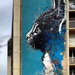 C215 New Mural In Paris, France
