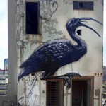 ROA New Mural In Johannesburg, South Africa (Part II)