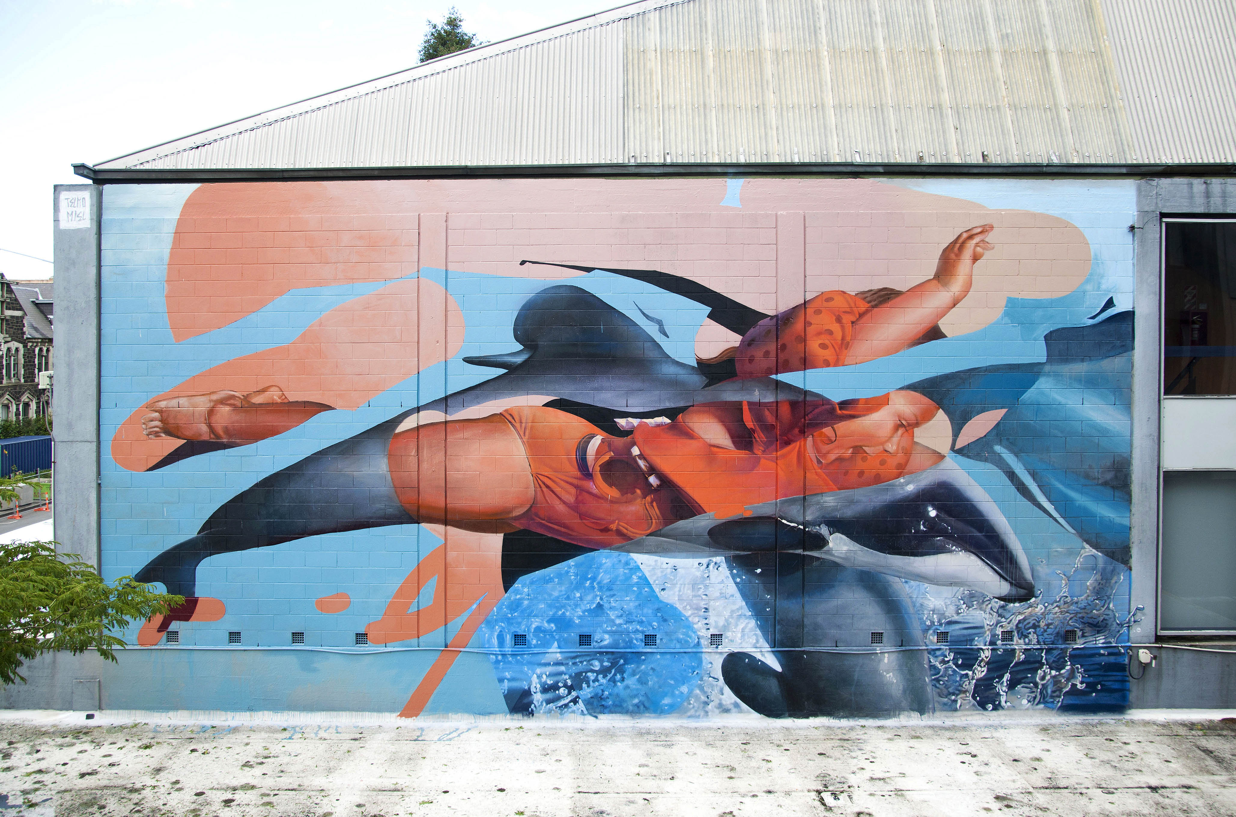 FullWall(DiveLikeHector2)NZ2015