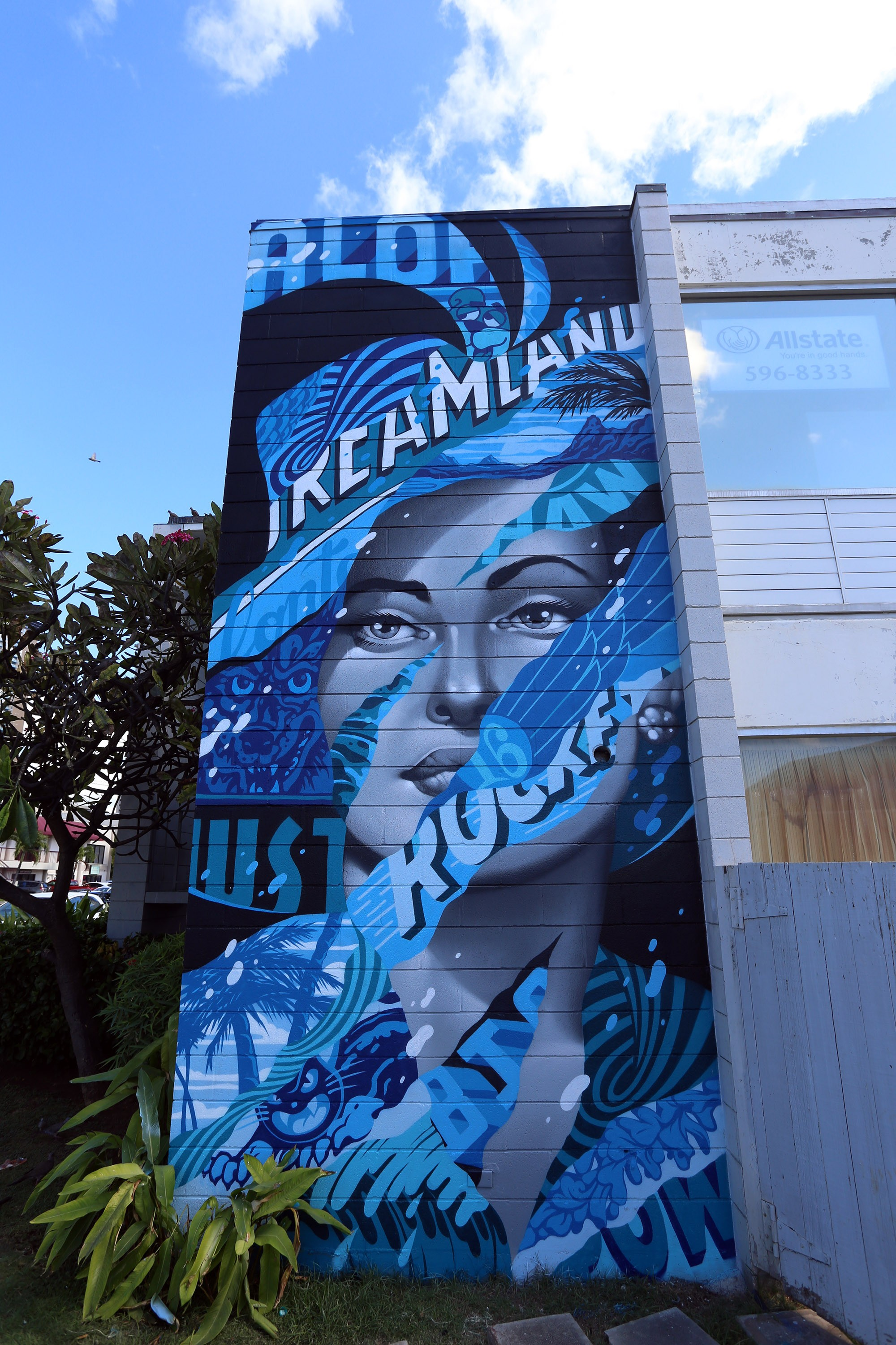 romlevy_TRISTANEATON_HAWAII_2016-3