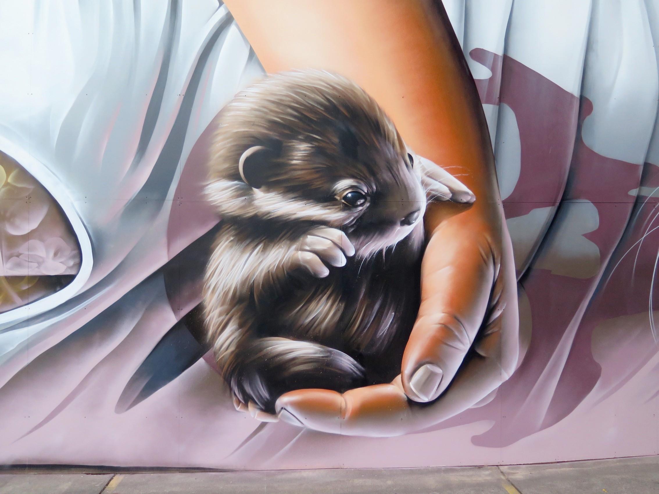 deansunshine_landofsunshine_melbourne_streetart_STREET_ART_NEWS SMUG OTTERS 3