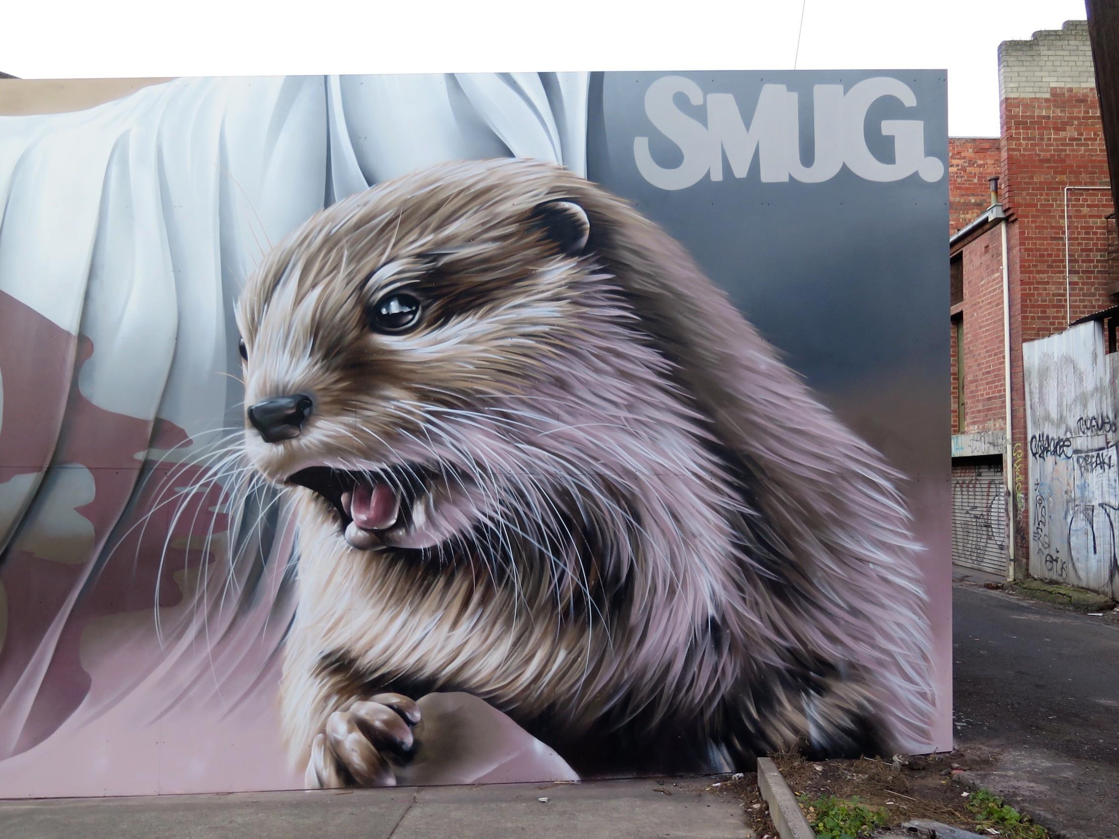 deansunshine_landofsunshine_melbourne_streetart_STREET_ART_NEWS SMUG OTTERS 4