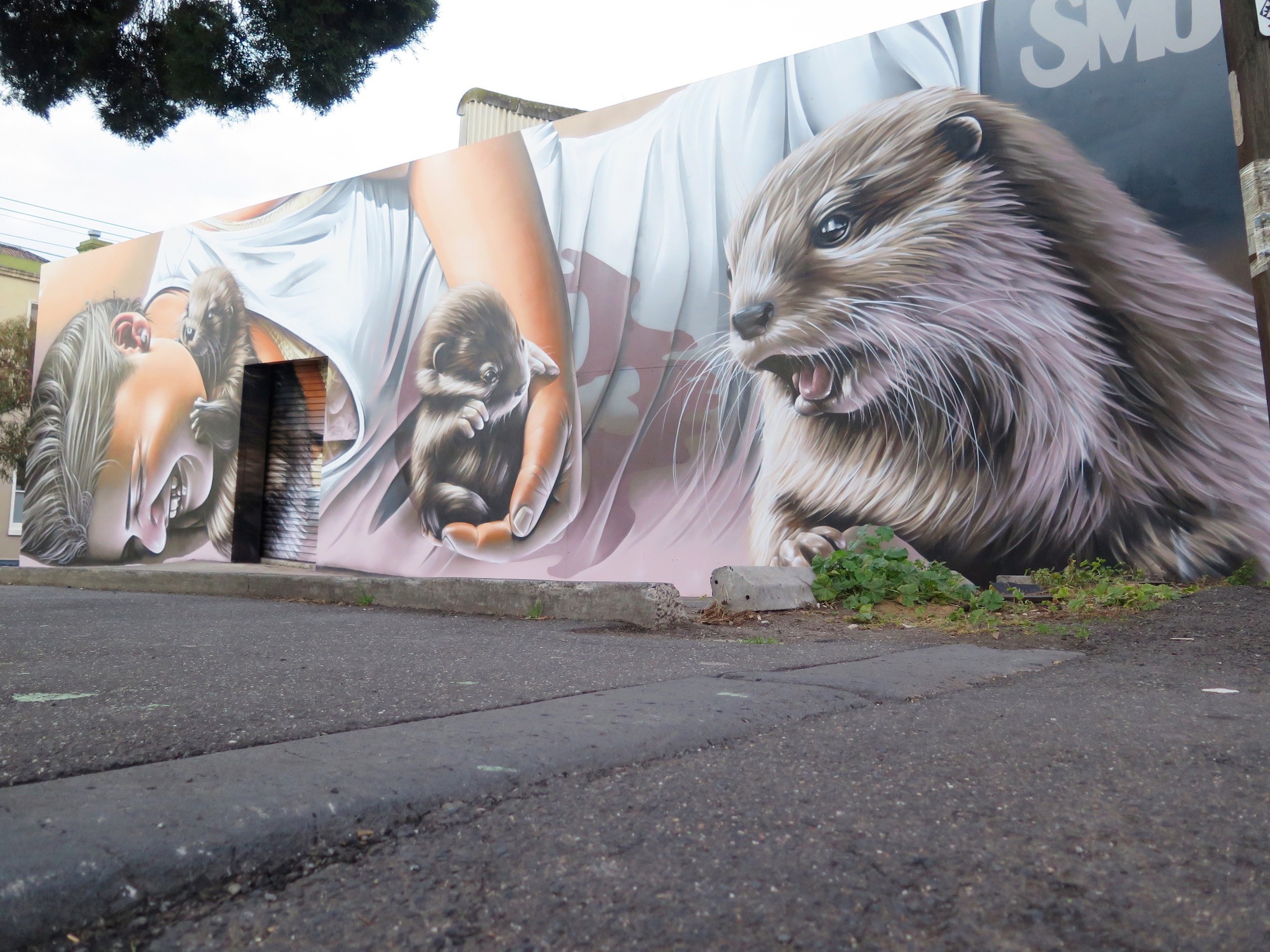 deansunshine_landofsunshine_melbourne_streetart_STREET_ART_NEWS SMUG OTTERS 5